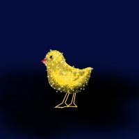 kurczaczek 1