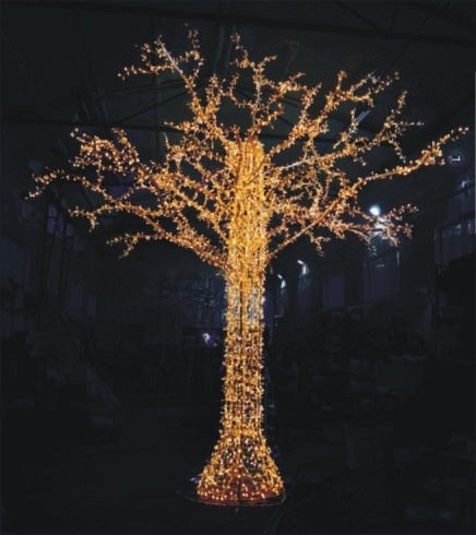 drzewo 3